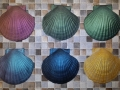 florida-shell-tops_colours